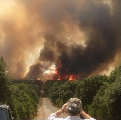 Sardinia_Italy_forest_fire_photo_natural_calamities